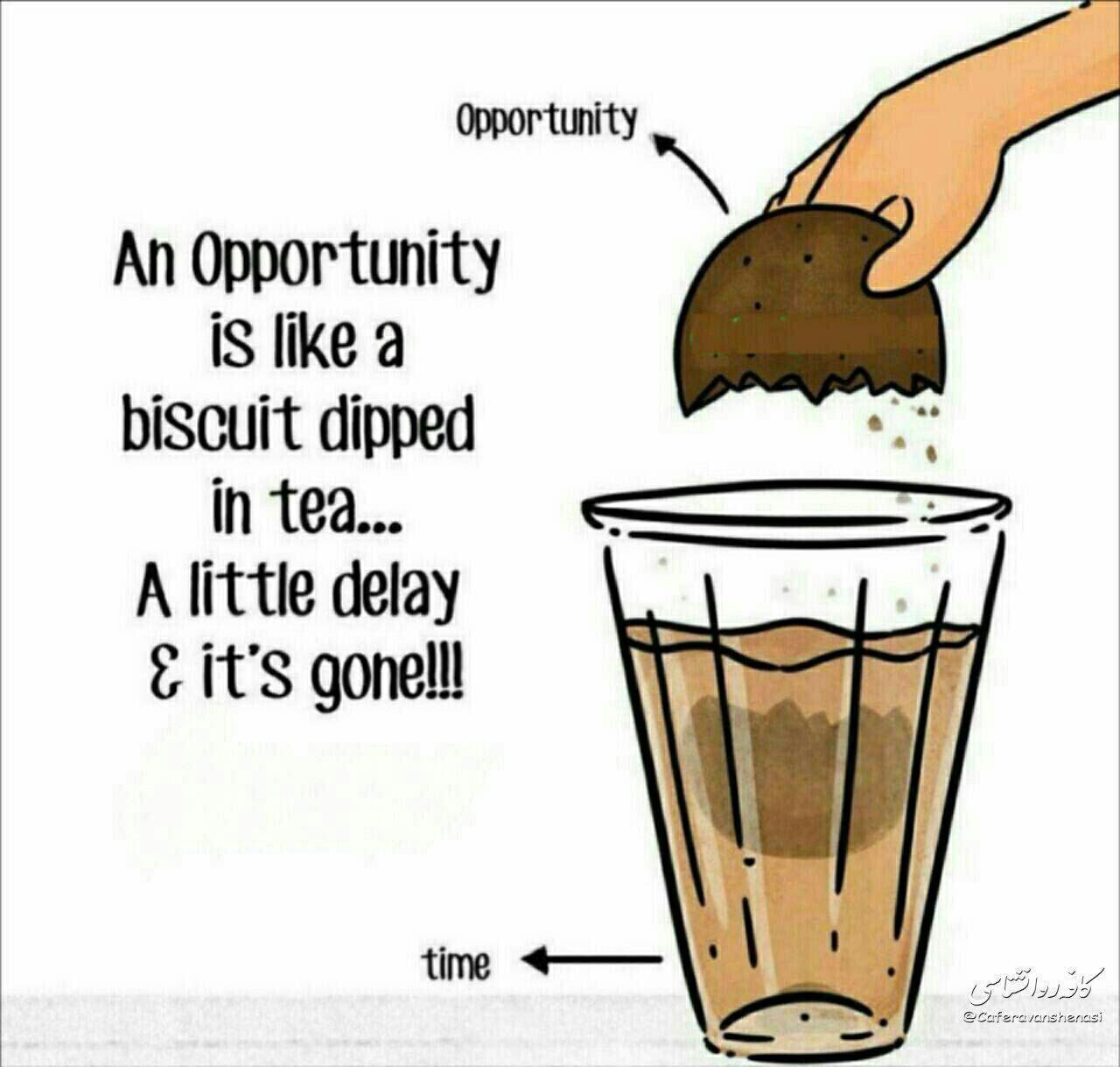 هر فرصت، مانند بیسکویت است